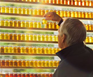 Maple syrup producer examining samples of syrup next to a window