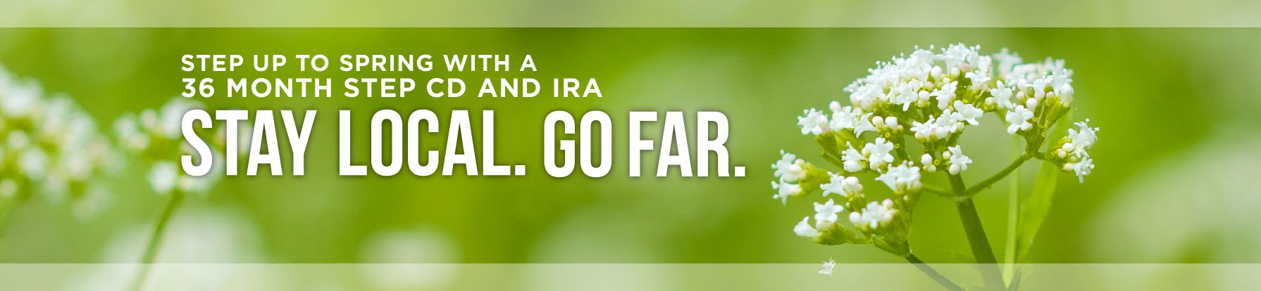 Step CD and IRA offer