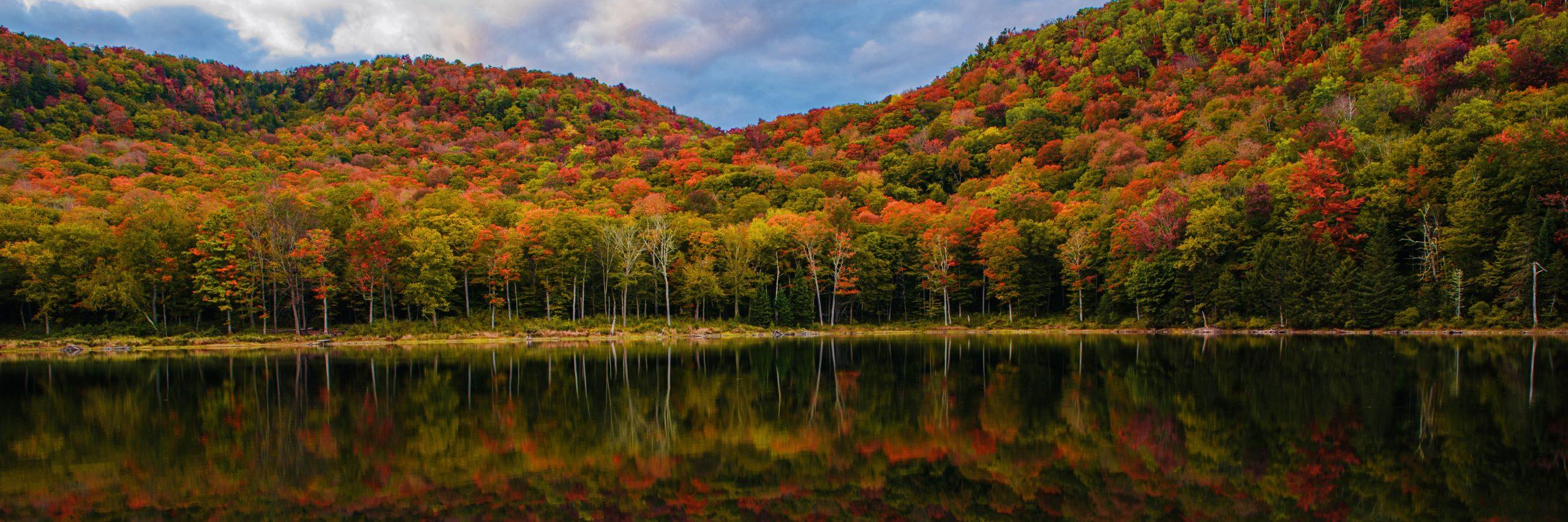Fall leaves at Eden Pond